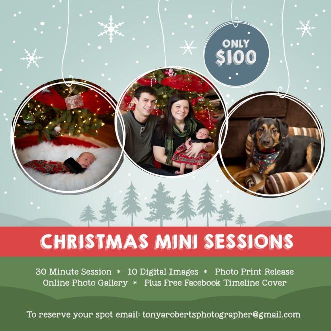 Christmas Mini Sessions 2015 (2)